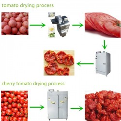 CREEZ UNE UNITE DE PRODUCTION DE TOMATES SECHEES
